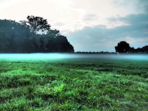 wandelen, exaten, bossen, heide, natuur