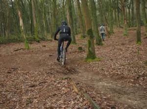 wandelen, mountainbiken middenlimburg tungeler wallen